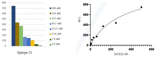 ACE2-Linearity-Assays-Spike-Proteins