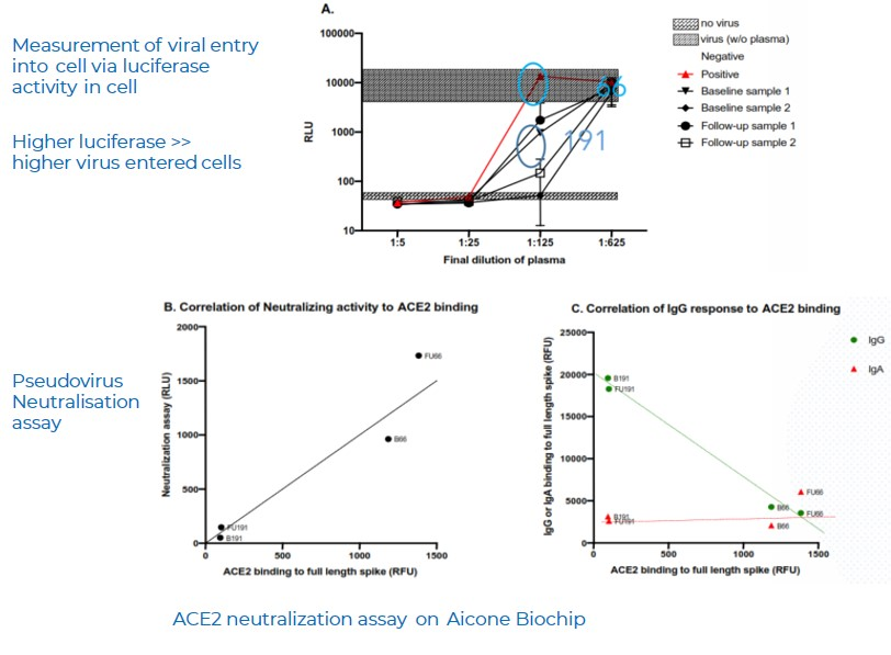 ACE2-Pseudovirus