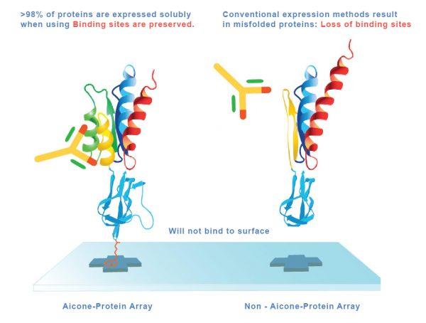 AiconeProteinArray-Advantages-img-Aicone