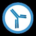 icon-antibody